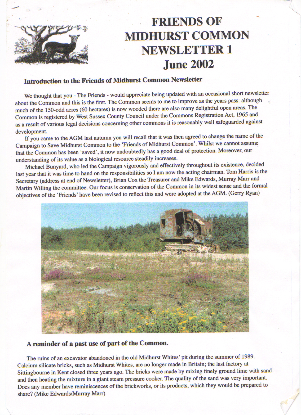 Newsletter 1 - June 2002 - A reminder of a past use of part of the common
