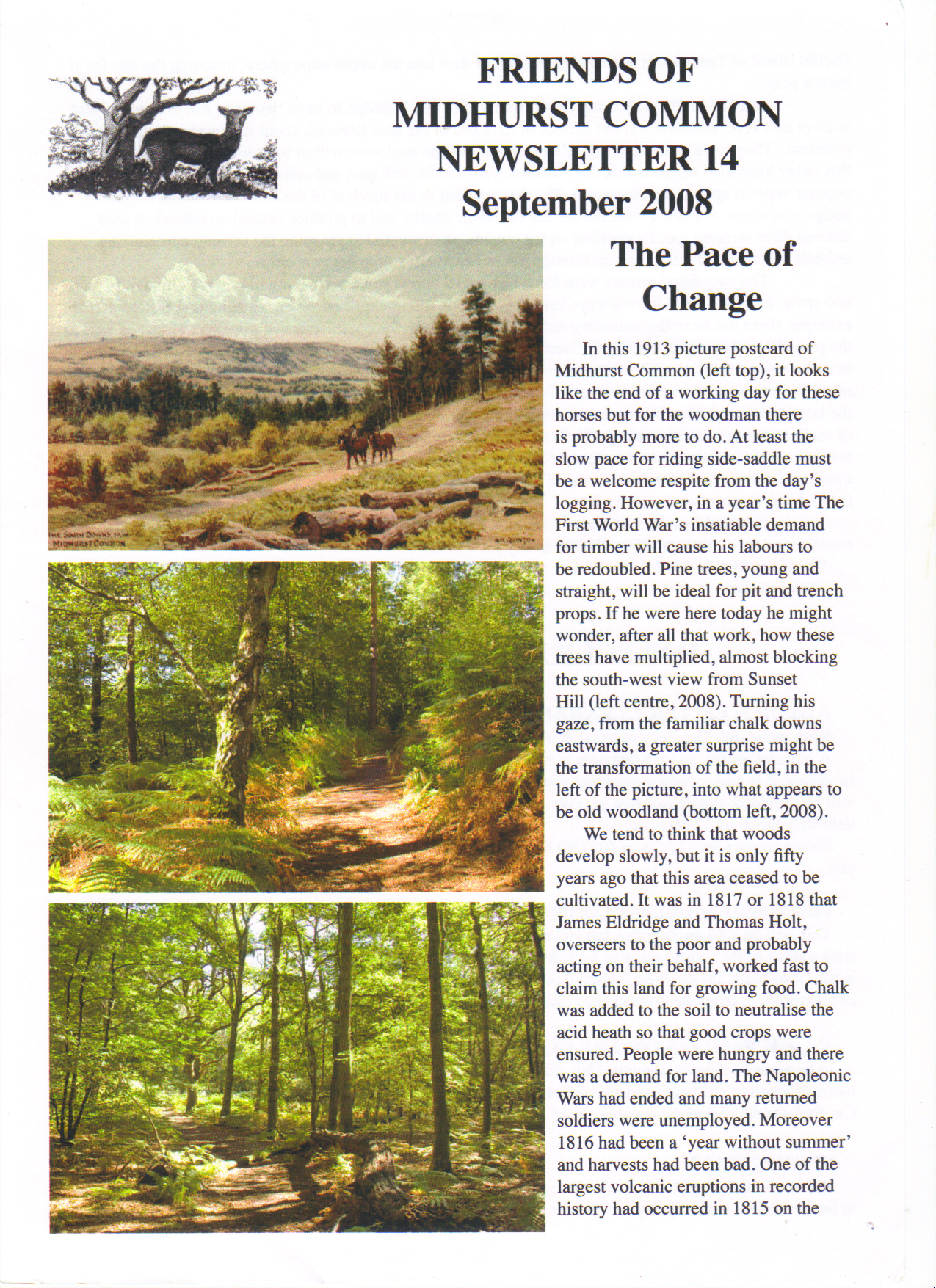 The pace of change - Newsletter no 14 part 1 of 2 September 2008